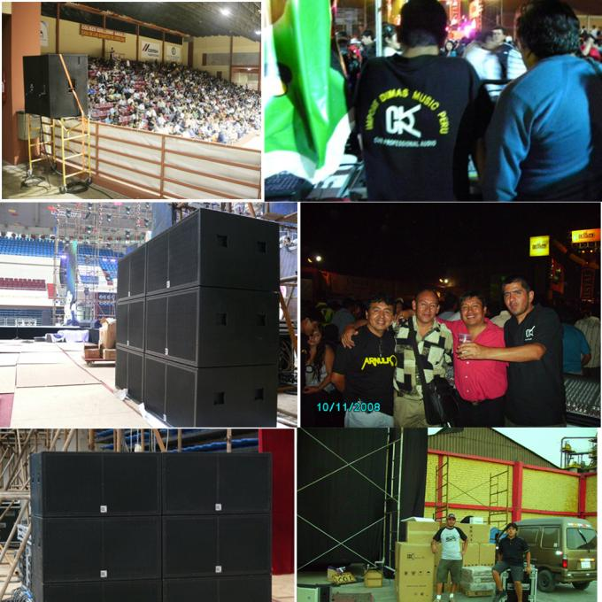 Low Frequency Speaker System Night Club